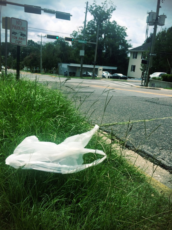 plastic bag on roadside